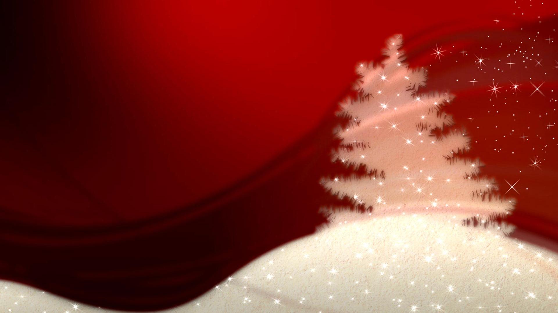 Christmas Trees Thunder Bay