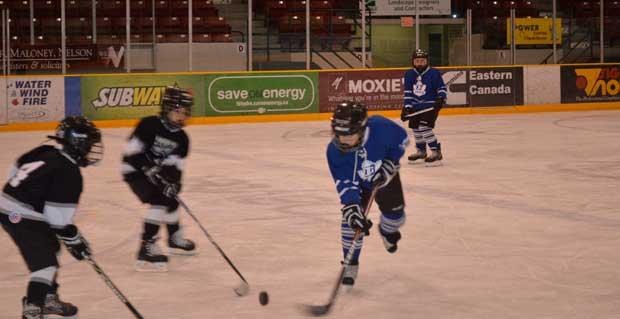 junior hockey at the gardens