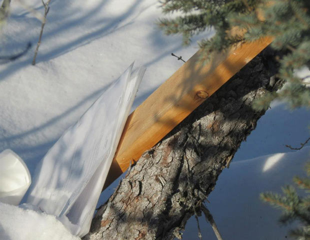 Injunction to end blockade on Winter Road - Tossed in the bush near De Beers Victor Mine