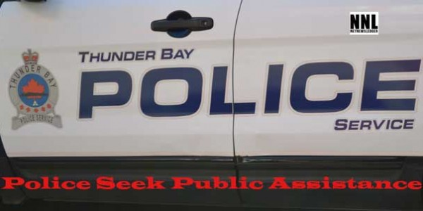 Police Seek Public Assistance in Assault