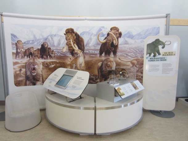 Red Rock Presents Ice Age Mammals