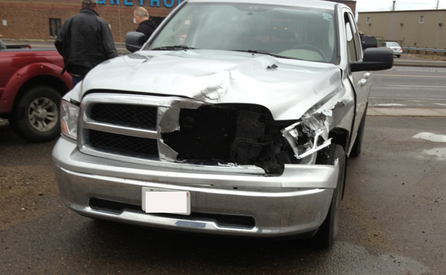 Deer and Vehicle Accidents are a Thunder Bay Reality