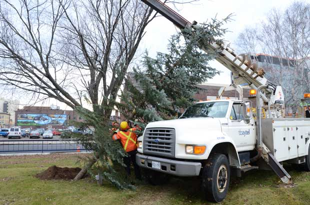 Paterson Park getting prepared for Holiday Fun with 18th Annual Tree Lighting