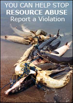 Walleye Waste Report a violation
