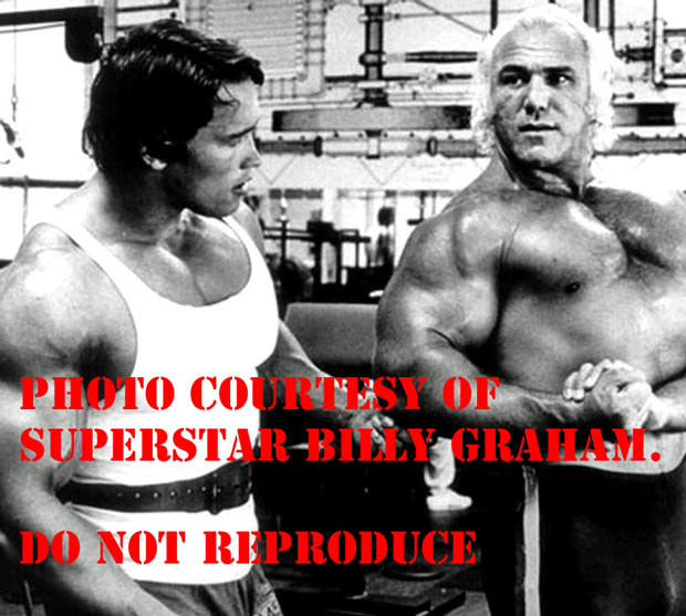 Who is Superstar Billy Graham?