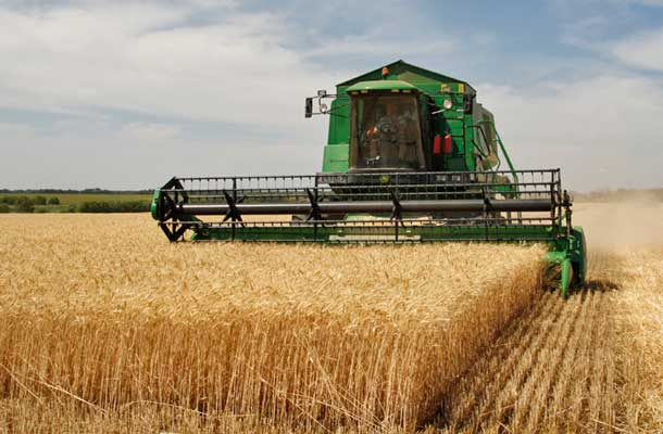 Fall Harvest is into the homestretch in Alberta and Manitoba.