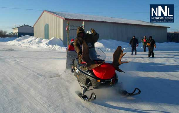 A gas powered reindeer enjoys the day in Attawapiskat. Photo by Rosiewoman Cree.