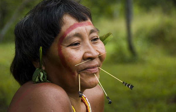 Tribal people around the world had reason to celebrate in 2013. © Fiona Watson/Survival