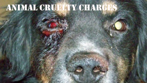 animal cruelty charges laid