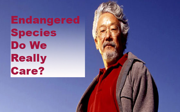 If we really cared about endangered species, we'd do a better job of supporting them - David Suzuki