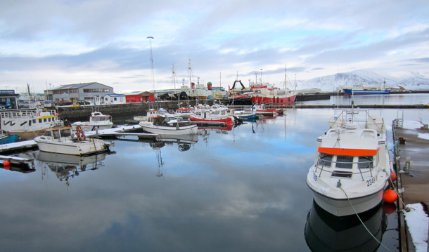 Reykjavik harbor with mountains in the background. Photo by Kerry Diotte.