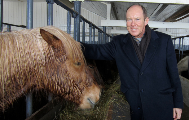 Travel writer Kerry Diotte gets up close with an Icelandic horse.