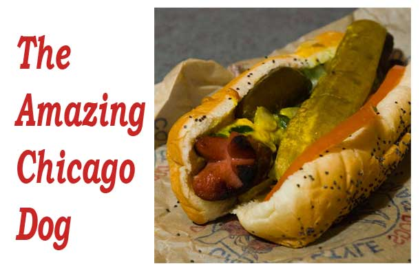 The Amazing Chicago Dog