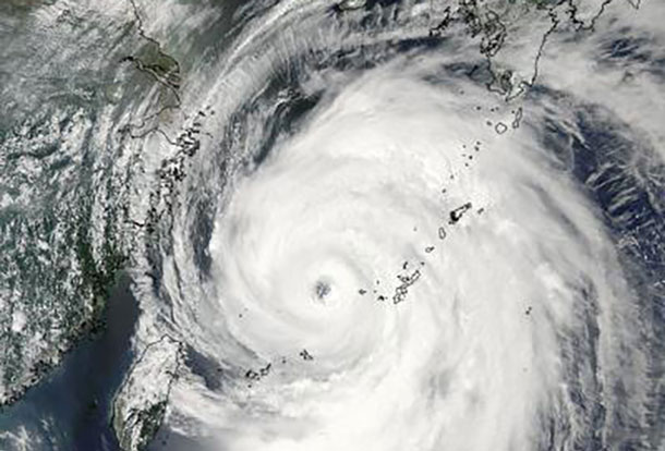 This visible image of Typhoon Neoguri in the East China Sea was taken by the MODIS instrument aboard NASA's Aqua satellite on July 8 at 0500UTC (1 a.m. EDT). Credit: NASA Goddard MODIS Rapid Response