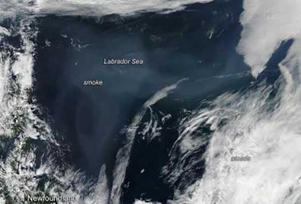 Smoke from Northern fires is now over the Labrador Sea