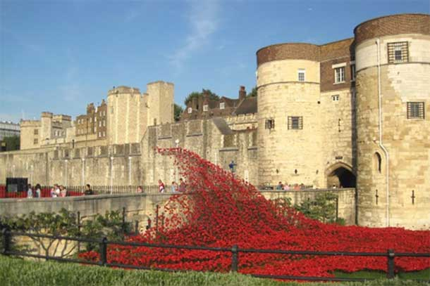 Tower of London Popples each ceramic poppy represents a British casualty during the Great War