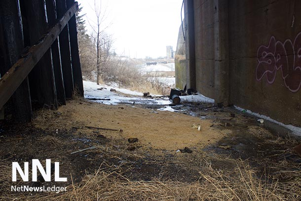 Grain spilled from rail cars under the CN Rail James Street Bridge