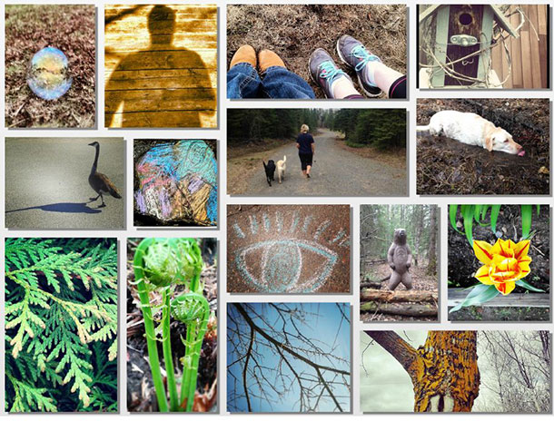 A collage of photos submitted by Thunder Bay Regional Health Sciences Centre staff who participated in the 30x30 Nature Challenge in 2014.