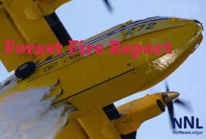 Forest Fire Report