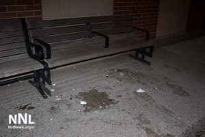 The ugly aftermath of yet another egging of Thunder Bay residents