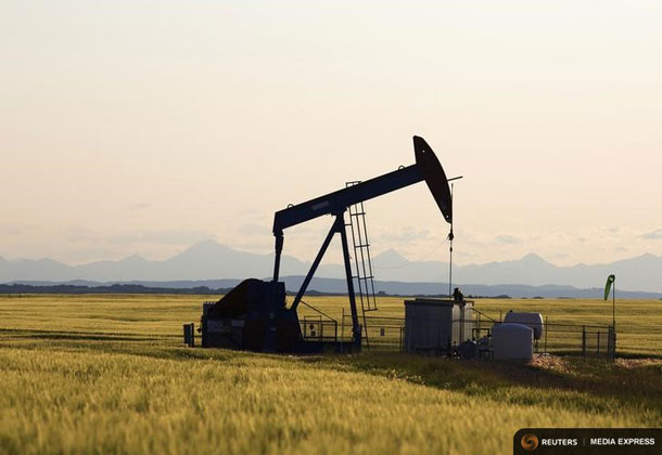 An oil pump jack pumps oil in a field near Calgary, Alberta, July 21, 2014. REUTERS/Todd Korol