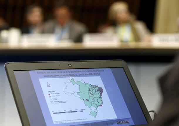 A slide on the Zika cases distribution in Brazil is pictured during an information session for Members States at the World Health Organization Executive Board meeting in Geneva, Switzerland, January 28, 2016. REUTERS/Denis Balibouse