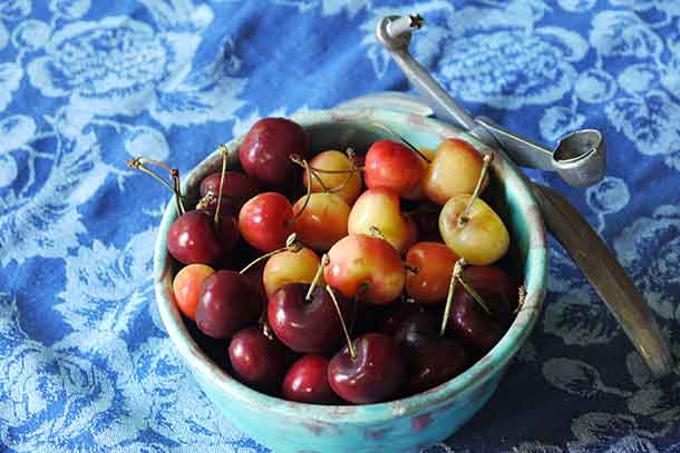 A bowl of fresh cherries. Credit: Copyright 2016 Brooke Jackson