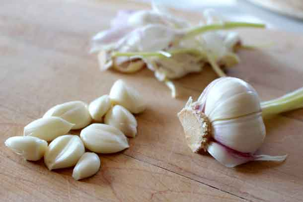 New garlic. Credit: Copyright 2016 Sue Style