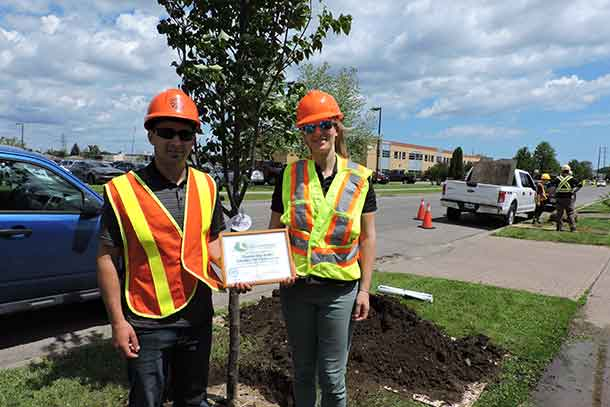 """Thunder Bay Hydro is pleased to participate in the beautifying of boulevards and public areas with height appropriate trees,"" says Chris Pereira, Utility Arborist Coordinator"
