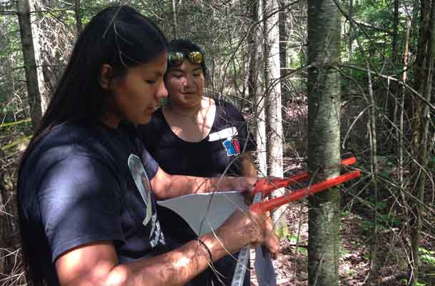 Participants Sydney White (left) of Whitefish Bay First Nation and Shaylyn Lands of Eagle Lake First Nation measure a tree as part of the inventory and identification activities?