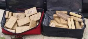 RCMP have seized 47 kilograms of cocaine - IMAGE RCMP