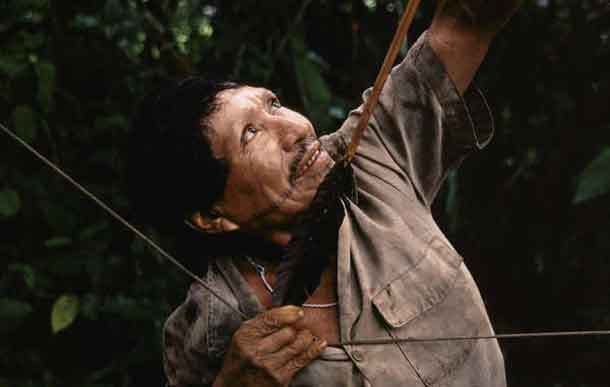 The Matsés have lived by hunting and gathering in the Amazon Uncontacted Frontier for generations. © Christopher Pillitz