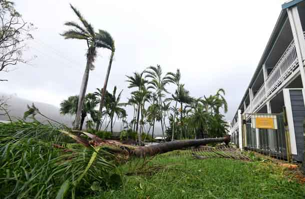 A tree lies on the ground near a motel after falling during strong winds from Cyclone Debbie at Airlie Beach. AAP/Dan Peled/via REUTERS