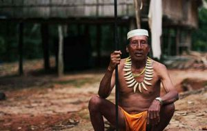 The Matsés have denounced oil exploration in the proposed Yavarí Tapiche reserve, which is part of their ancestral lands. © Survival International