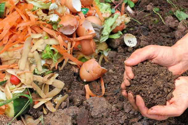 Reduce your household waste and try composting! Join Erin Beagle from Roots to Harvest on Wednesday, April 27 from 7:00-8:00 pm to learn how to create, store, and maintain compost to improve soil and plant production. The session is free, open to the public and will be held in ICP-Main (Room 2178) at Thunder Bay Regional Health Sciences Centre. Reserve your spot, by calling (807) 684-7237.