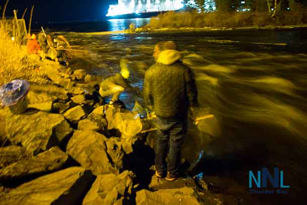 Swinging the net into the Current River hoping for a gathering of smelts these fishers were having fun