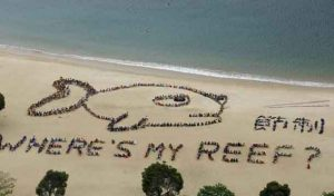 "A view of over 800 schoolchildren, teachers and volunteers forming the shape of a fish with a sad expression, alongside Chinese characters that read ""refrain"", at Repulse Bay in Hong Kong, April 23, 2015. The event was in honour of Kids Ocean Day, to send a global message to stop consuming reef fish in order to protect the Earth's coral reefs. REUTERS/Bobby Yip"