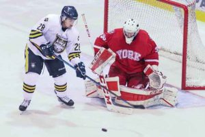 Lakehead Thunderwolves York Lions