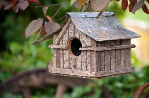 Small wooden bird house with iron roof hanging in cherry tree - Image Depositphotos.com