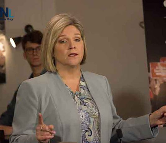 New Democrat leader Andrea Horwath