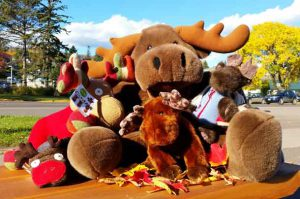 Moose Madness Gets a Makeover with Headliner Kid Band, The Bazillions!