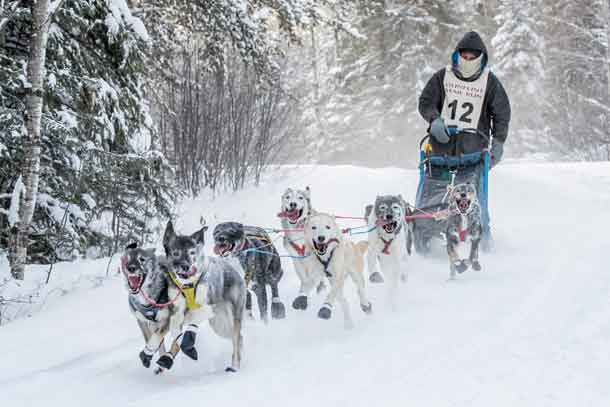Gunflint Mail Run starts off dogsledding season