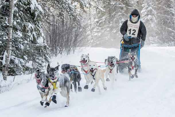 Gunflint Mail Run starts off dogsledding season