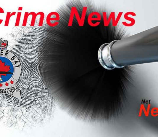 Thunder Bay Police Service Crime Update - Image depositphotos.com