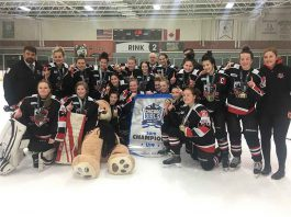 Thunder Bay Queens Harvest Gold in Chicago