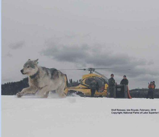 Photo courtesy of National Parks of Lake Superior Foundation