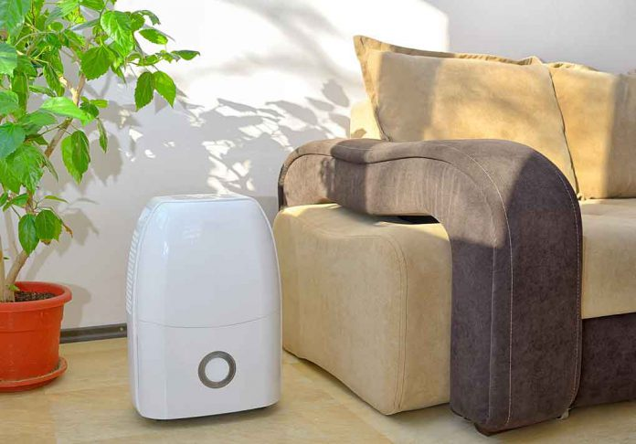 4 Benefits of Using A Dehumidifier at Home