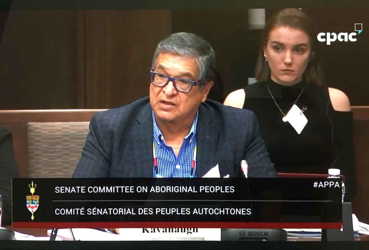 Grand Council Treaty #3 Grand Chief Kavanaugh speaking to Senate Committee