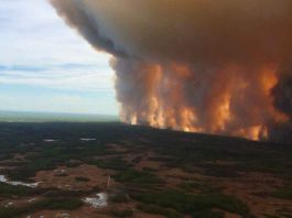 Wildfire near High Level in Northwest Alberta