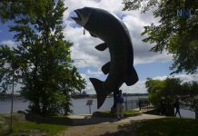 Huskie the Muskie in Kenora Ontario